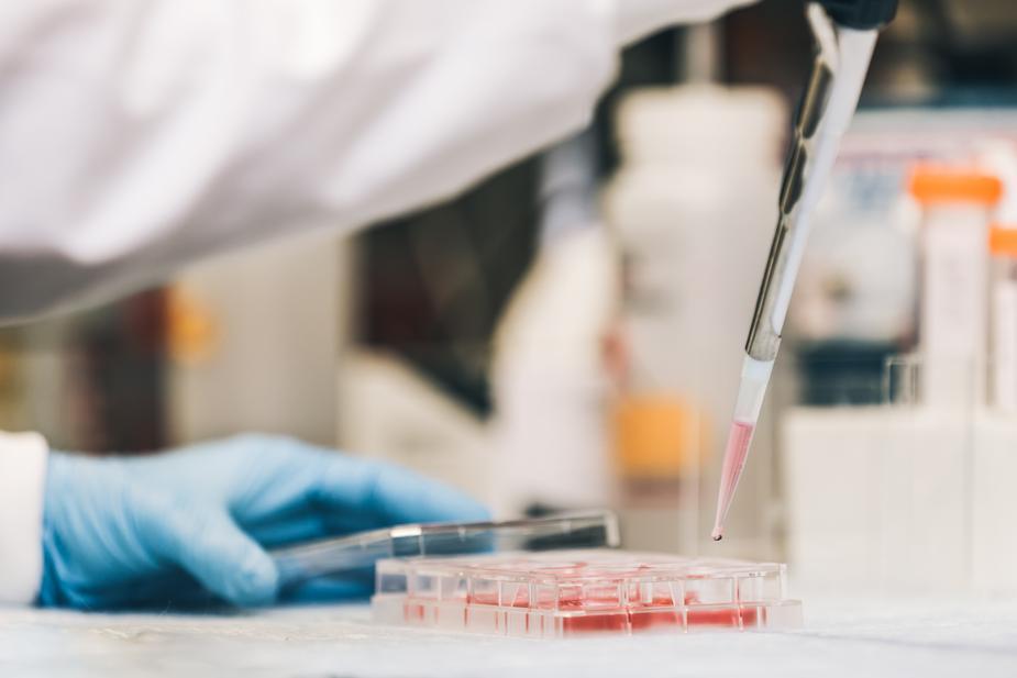 Troubles de l'érection : un risque accru inscrit dans l'ADN