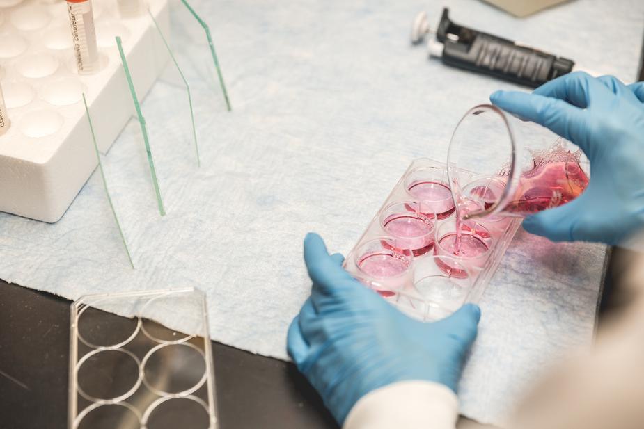 Séquencage ADN
